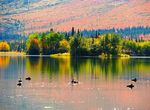 Title: Autumn at the lake