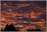Title: Fire in the Sky