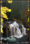 Title: Lower Lewis River Falls