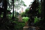 Title: Jungle encroaches on a cemetary