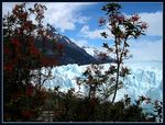 Title: Springtime at Perito Moreno