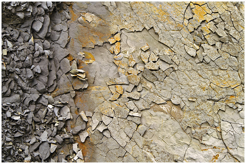 Mosaic made with Flysch