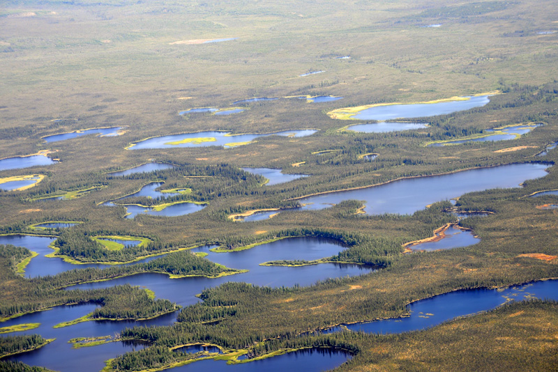 Between Inuvik and Norman Wells - 10