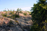 Title: Canadian shield