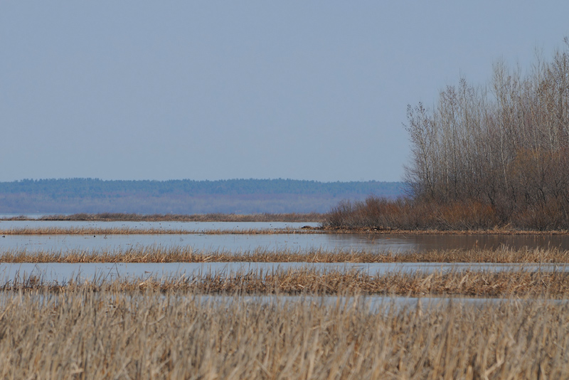 St-Lawrence River - 2010 - 2