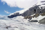 Title: Columbia Icefield