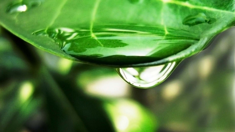 *~A Drop OF Water~*