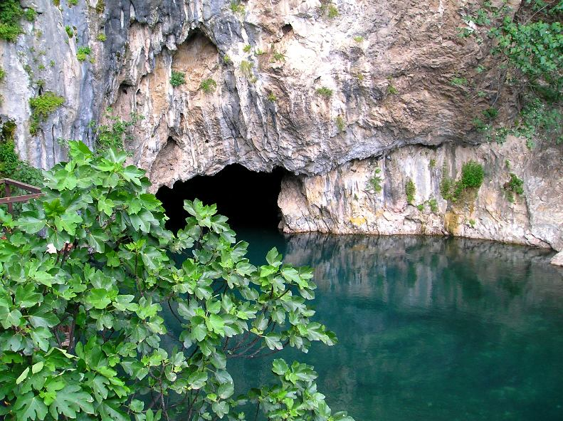 The source of the Buna