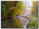 Title: Autumn at the river