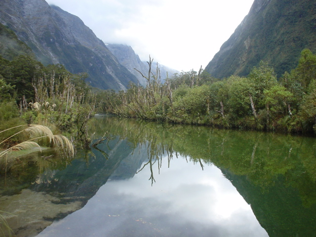 Reflection, on Milford Track