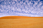Title: The Namib Desert