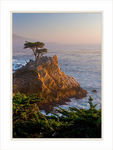 Title: Lone Cypress on Golden Rock