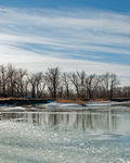 Title: Mid Winter Thaw