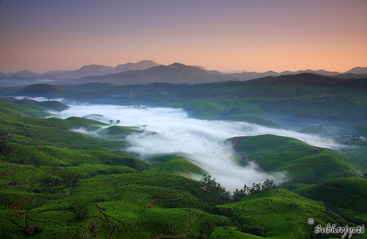 Munnar - God's own country