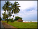 Title: The Lumley Beach Road