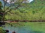 Title: River Number 2