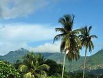 Title: View From My Home