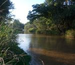 Title: Tranquility of Paraguay