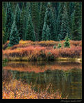 Title: Autumn in the Rockies