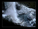Title: Frozen TreasurePanasonic Lumix FZ20