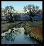 Title: Owens Valley Evening