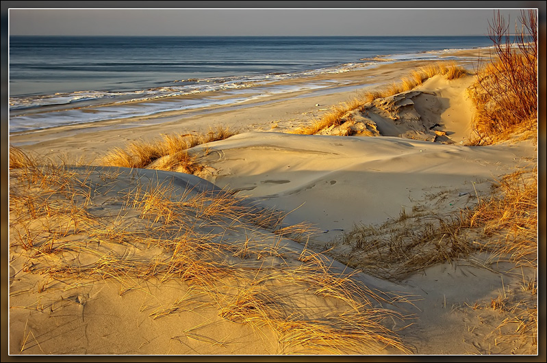 Dunes of Curonian Spit