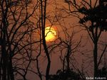 Title: Sunset in Pench