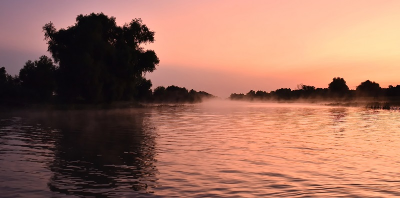 DANUBE DELTA IN THE MORNING