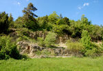 Title: Shell lime stone area - Devils Cave