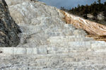 Title: Mammoth Hot Springs