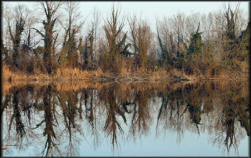 Reflections on the River Sile