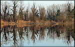 Title: Reflections on the River Sile