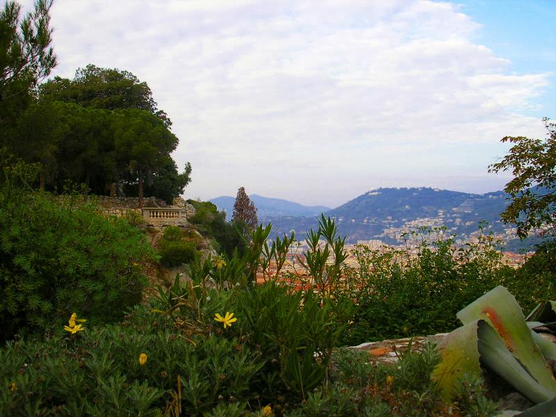 The Flora of French Riviera