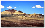 Title: Painted Desert