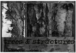 Title: Trees & Structures