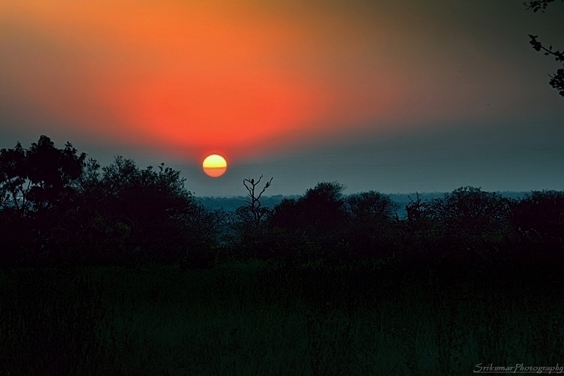 Wish You An African Sunset