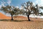 Title: landscape of Namibia