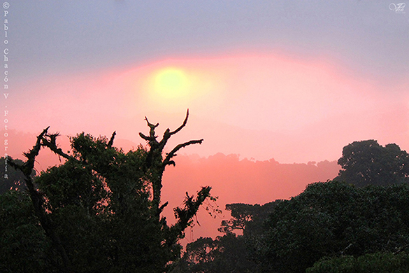 Sunset in hill of death