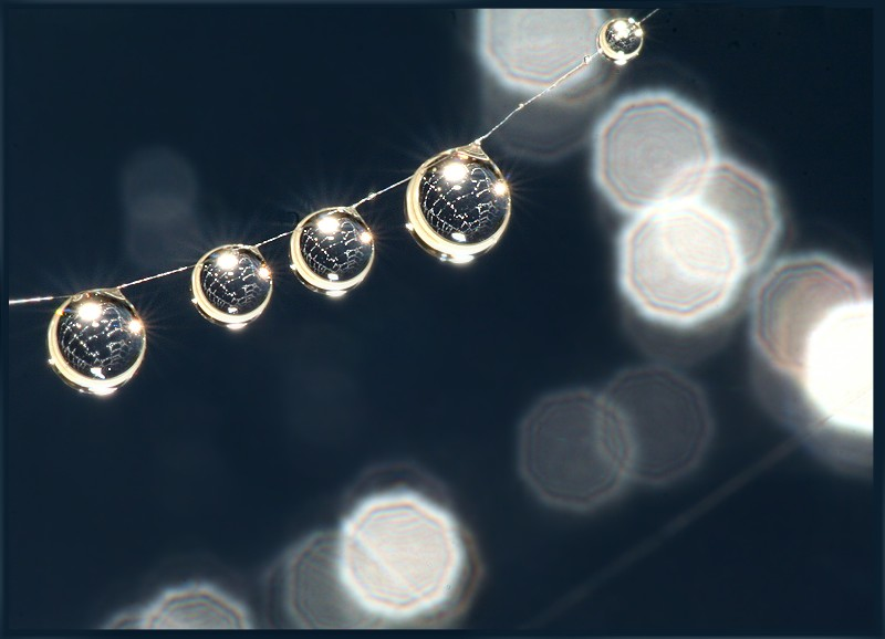 Drops - Light - Spiderweb