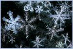 Title: I'm dreaming of a white Christmas ...