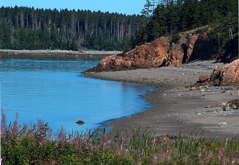 At the Shore of Pond Cove