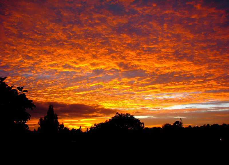 Fire in the autumn sky