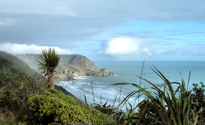 For Marhowie - Piha with a view