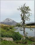 Title: Errigal Mountain