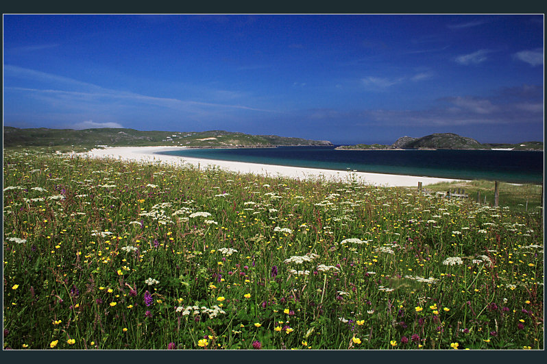 The Machair and Scottish White Sands...