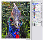 Noise reduction with NeatImage