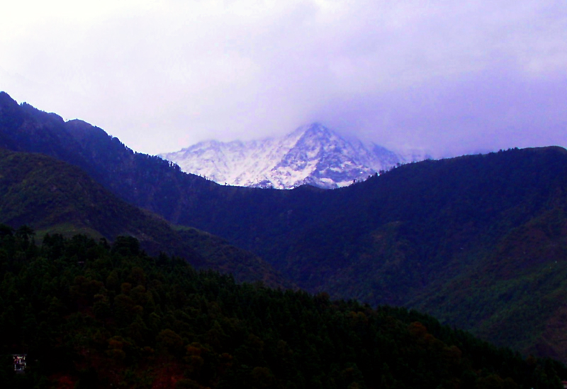 Mountain view from Mcleodganj