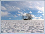 Title: Between sKy and Snow