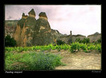 Title: Pasabag vineyard, fairy chimneys