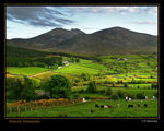 Title: The Mourne Mountains